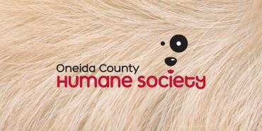 Oneida County Humane Society